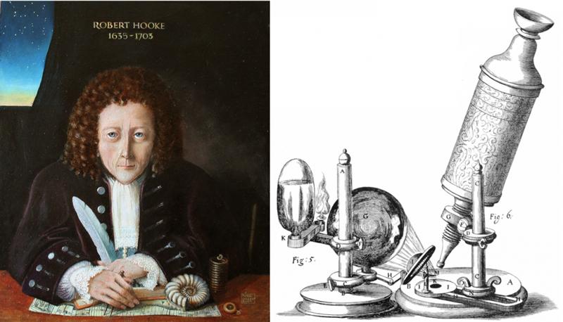 تاریخچه اختراع میکروسکوپ
